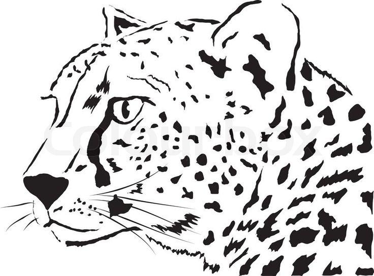 Persepolis Stock Illustrations And Cartoons | Getty Images |Iranian Cheetah Vector
