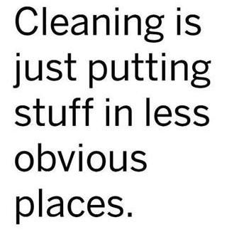 Cleaning...: Cleaning, Quotes, Truth, Funny Stuff, So True, Humor, Obvious Place
