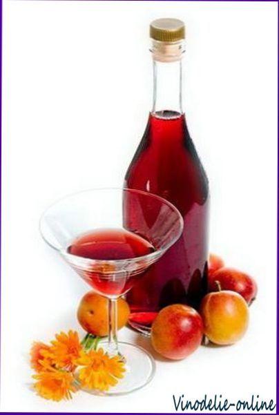 Приготовление плодово ягодных и виноградных вин в домашних условиях