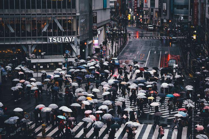 "Shibuya - ©Takashi Yasui<br> <a href=""http://takashiyasui.com/"">Portfolio</a> | <a href=""http://www.instagram.com/_tuck4/"">Instagram</a> | <a href=""http://www.facebook.com/takashiyasui.photography"">Facebook</a> | <a href=""http://reco-photo.com/"">RECO</a>"