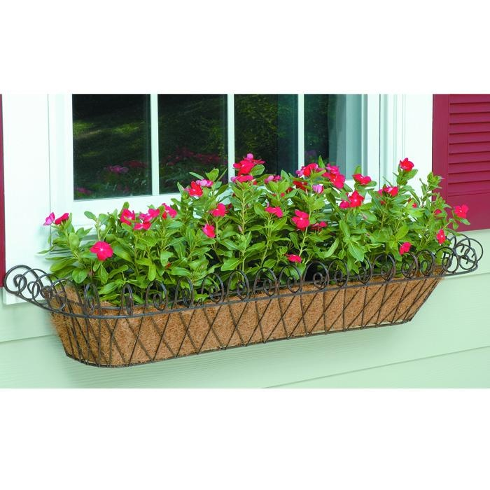 96 Best Images About Wpc Planter Pot: 75 Best Coco Liners Images On Pinterest