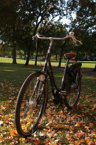 Studenten gaan vaak met de fiets.