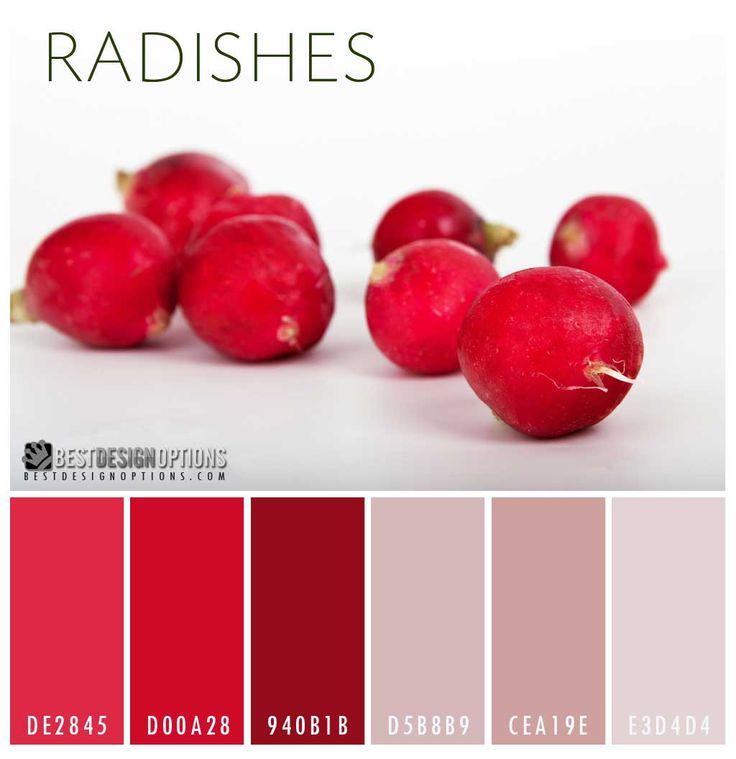 21 Best Red Color Palettes Images On Pinterest Color