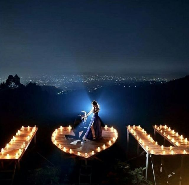 Marriage Proposals, Perfect Proposal