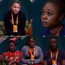 Big Brother Naija: Debie-rise Efe TBoss Thin Tall Tony up for eviction