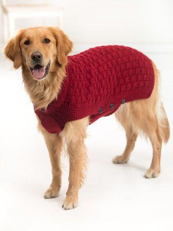 Lion Brand® Vanna's Choice® Clifford Dog Knit Sweater