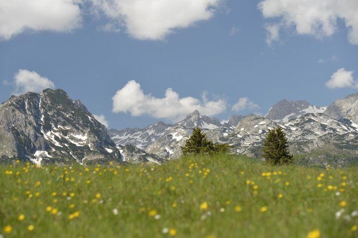 Сердце Дурмитора  #прогулка#дурмитор#черногория#горы#балканы#походы#туризм#альпинизм#скалолазание#долгожители#горцы#отдых#поход#горы#путешествие#путешествия#путешествуем#путешествуй#путешествовать #путешествую#турист#туристы#поездка#отпуск#отпуск2016#отдых #отдыхаем#заграница#тур#путь