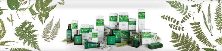 Felci - Rendeld meg online! Lerbolario Naturkozmetikumok http://lerbolario-naturkozmetikumok.hu/kategoriak/ferfi-kozmetikumok/felci