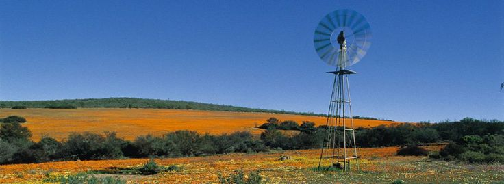 valley of 1000 hills south africa | African Golf Collage | South Africa Train Travel | Safari Tours ...