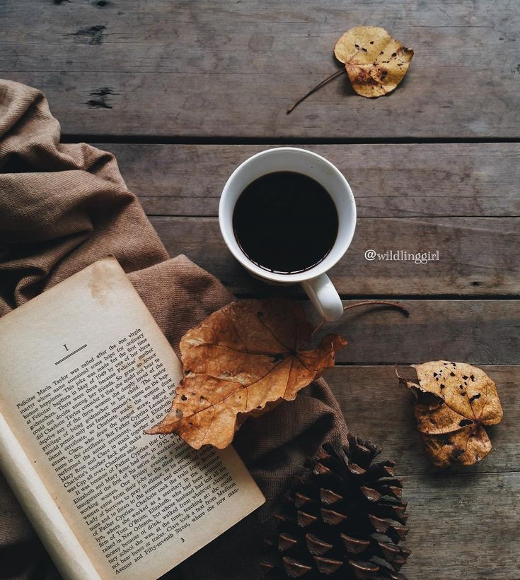 448 Best Books And Coffee And Tea Images On Pinterest