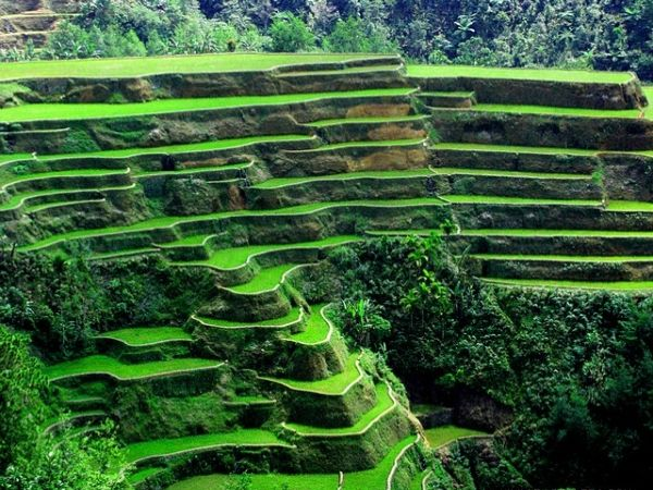 Banaue Rice Terraces, the Eighth Ancient World Wonder?