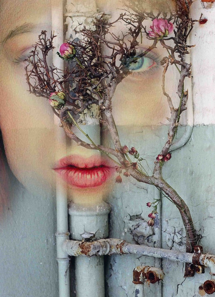 """THE COLOUR OF LIPS part 1: Growing from a crack in the bricks, high above the earth, where the paint is peeling and, neglected of care, the rust of pipes below bleeds brown and dirty, there grows a tree that dreams of a girl with doe eyes, its flowers the colour of her heart shaped lips.   Words: http://shelsweeney.com/  Image: Antonio Mora - """"Enredadera""""   pil4r@routetoart.com"""