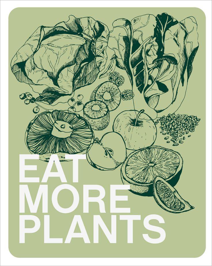 do it: Health Food, Vegetarian Food, Food Group, Vegetarian Protein, Health Care, Healthy Eating, Health Tips, Plants Based, Weights Loss