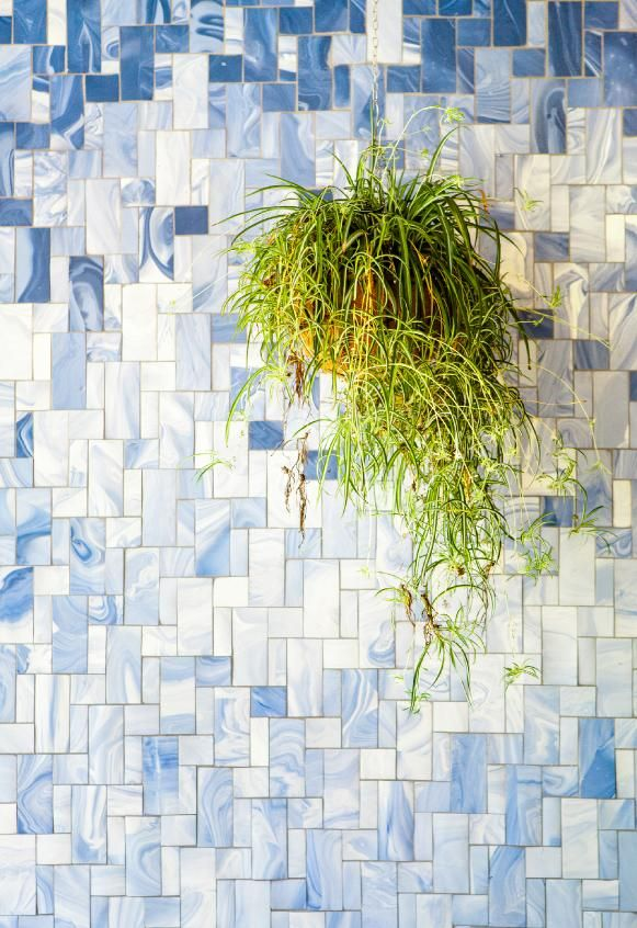 Alissa and Nienke | Pigments And Porcelain Tile Wall