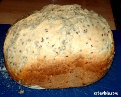 La maggior parte degli errori con le macchine per pane dipendono da due fattori principali: la maggior parte di chi compra una macchina per fare il pane in