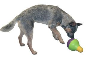 Starmark Bob-a-Lot: This is Not Your Ordinary Dog Treat Toy - Dog Pet Care Corner - PetSolutions