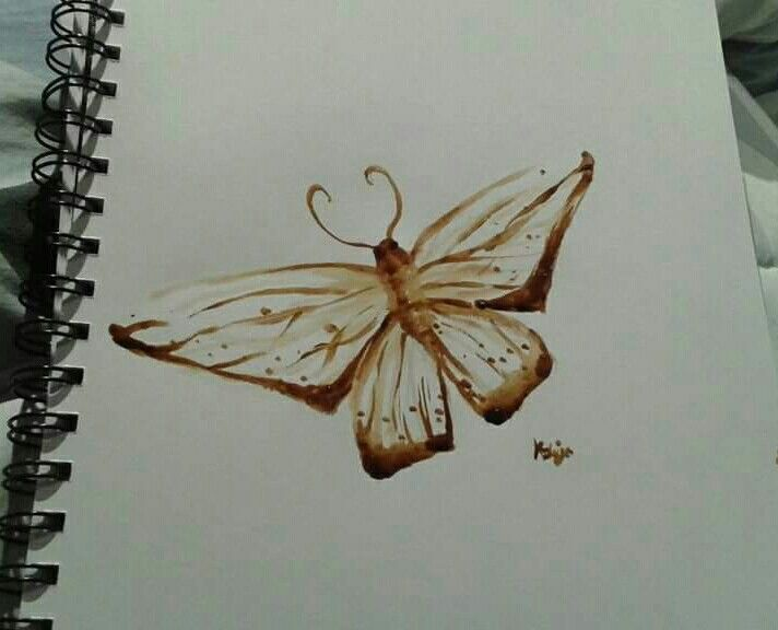 """Mothaccino"" moth painted using coffee"