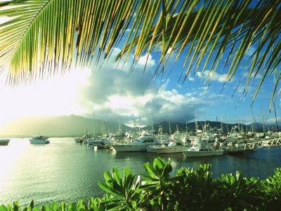 Harbor, Cairns, Australia #travel #cairns #australia