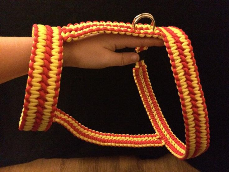 Paracord Double Cobra Harness