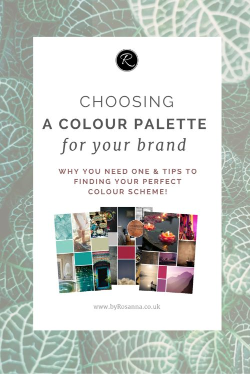 How to choose a colour palette for your brand (why you need a set scheme and how to create one!)