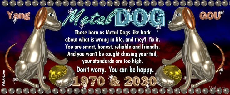 1970 2030 Chinese zodiac born in year of Metal Dog by