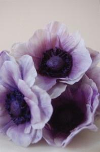 Bridesmaid Bouquet #2: light purple anemones