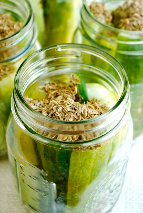 Easy Canned Dill Pickles Recipe - Valya's Taste of Home  |Canning Dill Pickles