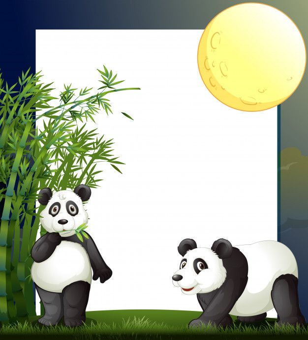 Download Panda And Bamboo Border Template For Free Vector Free Border Templates Free Frames