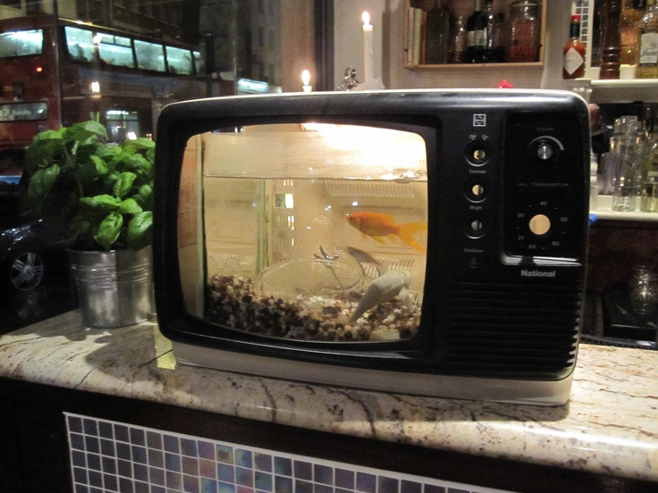 10 best images about Old TV fish tank aquariums on ...