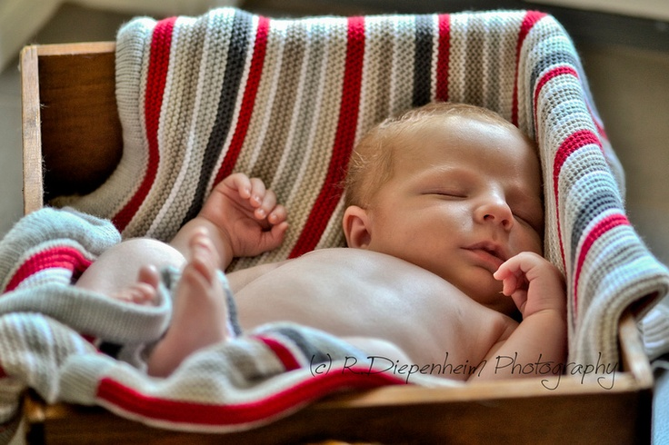 3 week old Xavier