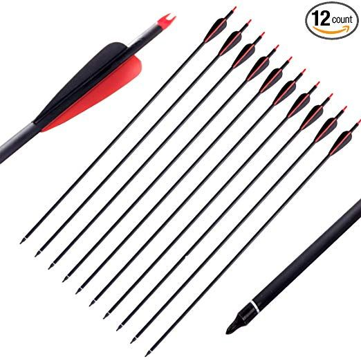 PG1ARCHERY Archery Carbon Arrows, 12 Pack 30 inch Practice Hunting