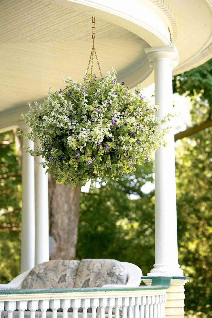 jardines colgantes jardineras colgantes macetas de jardn cestas colgantes ideas de recetas ideas del patio ideas jardn plantas en maceta