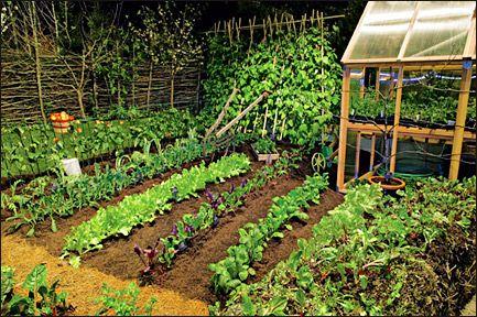 veggie+garden+ideas | Last year's People's Choice award-winning garden featured the theme of ...