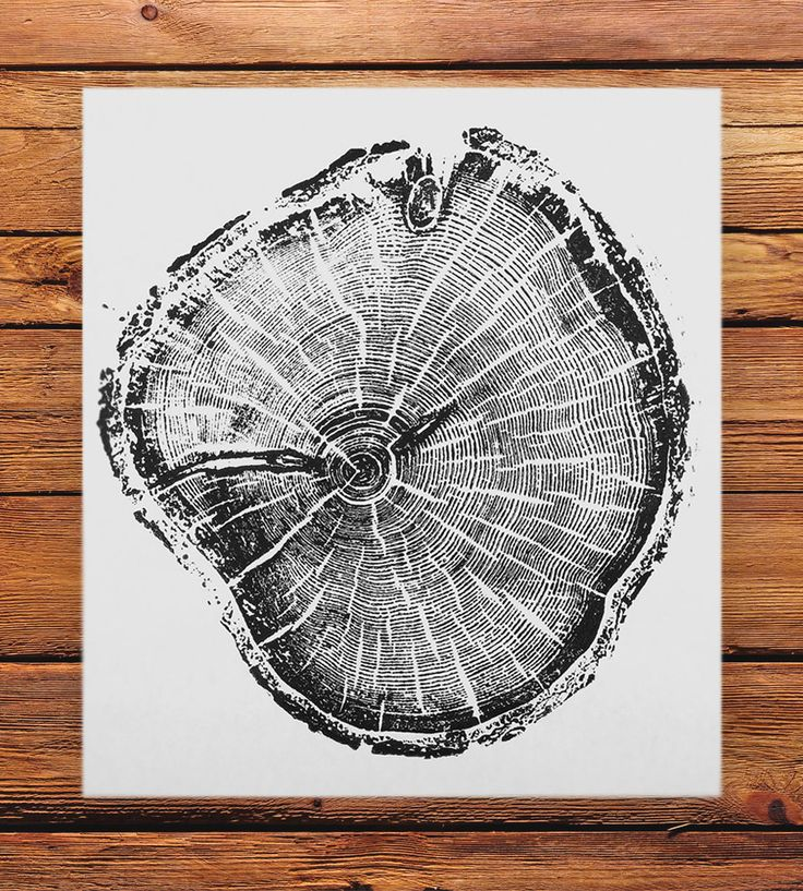 Old Growth Pine Tree Print | This simple wood print was printed by hand from a cross-sectio... | Posters