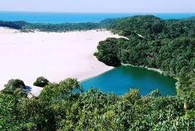 kingfisher resort fraser island