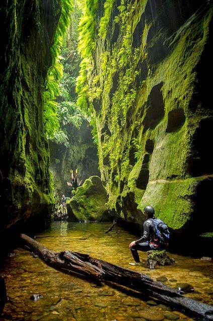 María Dolores: Google+ - Claustral Canyon en el Blue Mountains / Australia (por…
