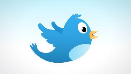 Dlaczego ptaszek nie wszędzie ćwierka tak samo głośno? Czyli social media po polsku