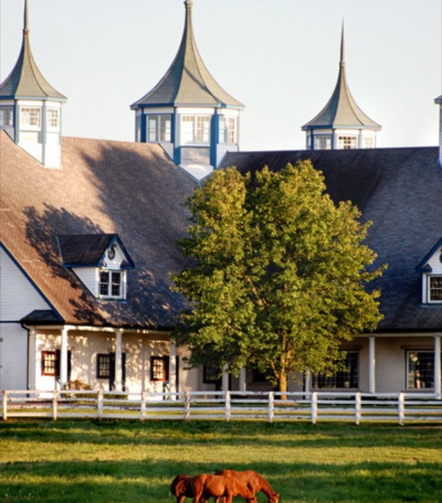 768 Best Images About Stables I Dream Of On Pinterest