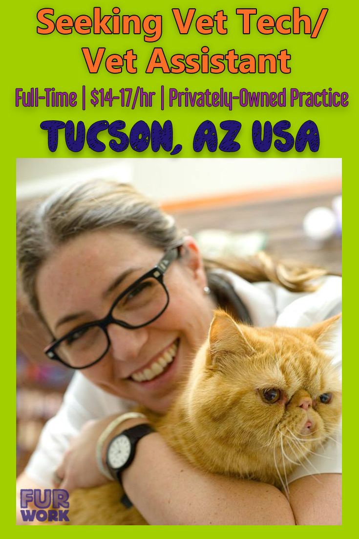 Vet Tech Full Time, Rolling Hills Pet Clinic, Tucson, AZ