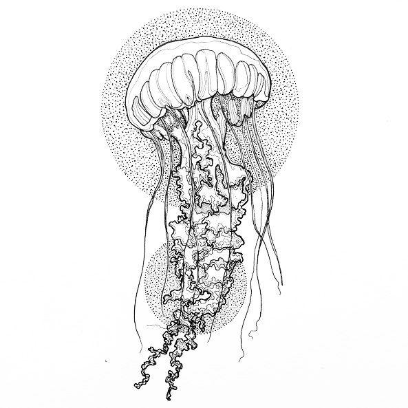 Картинки медуз для тату