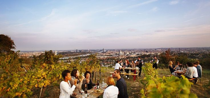 H Βιέννη αγαπά το κρασί και το δείχνει! - http://parallaximag.gr/taxidi/kosmos-taxidi/allo-prosopo-mias-protevousas