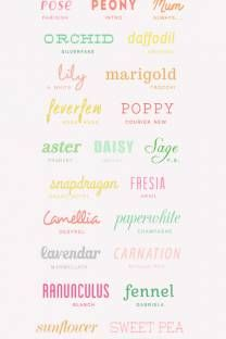 100 free  fonts..colorful,handwritten, romantic and party