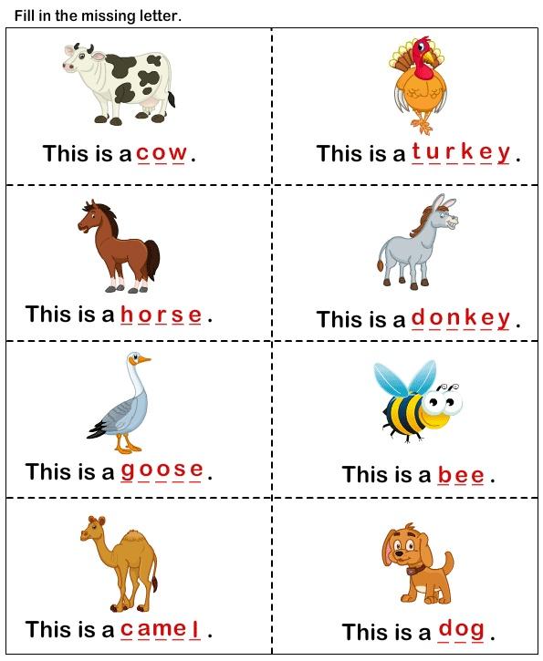 162622236517247691 on Farm Animal Worksheets