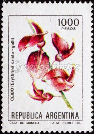 A flor da corticeira (el ceibo) é a flor nacional da Argentina e Uruguai.   Também chamada eritrina-crista-de-galo, bico-de-papagaio, suinã, flor-de-coral, mulungu e sananduva.
