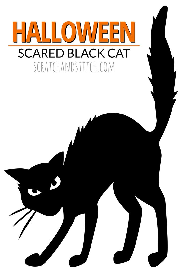 Halloween scared black cat silhouette in the window. FREE DOWNLOAD by scratchandstitch.com