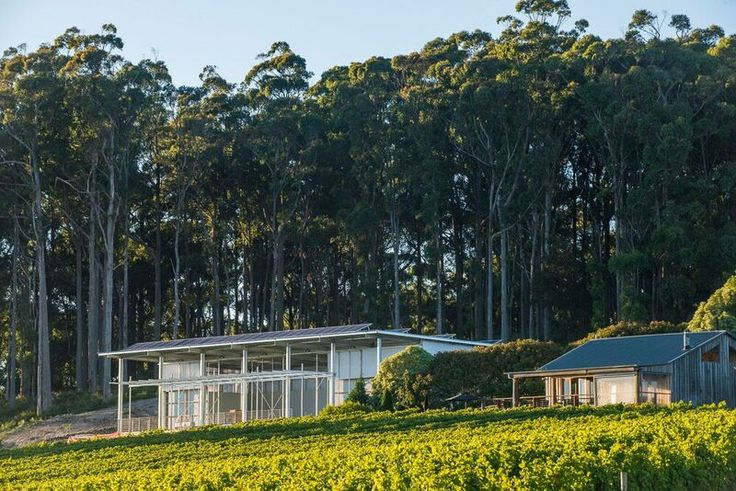 Our cellar door and new winery building