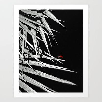 LADYBUG Art Print by Diane Perkins Photography - $16.00