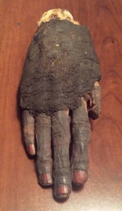 Ancient Egyptian Princess Mummy Hand. With Painted Henna Nails.