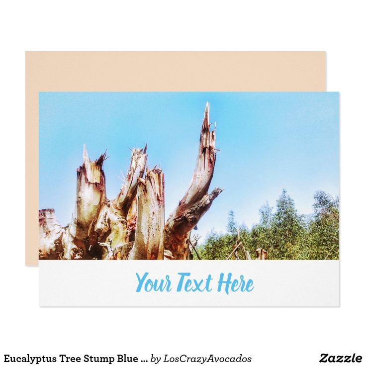 Eucalyptus Tree Stump Blue Sky Invitation Card