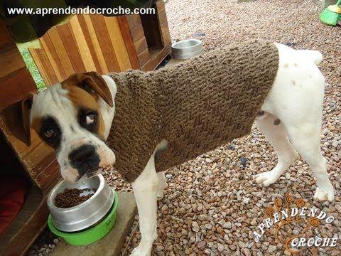 1º Parte - Roupinha de Croche para Cachorro Boxer - Aprendendo Crochê - YouTube